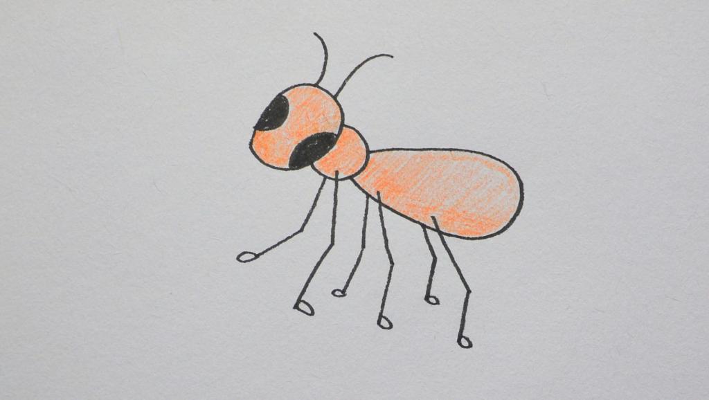 打开 打开 一分钟简笔画,让宝宝跟着一起画蚂蚁 打开 七彩小画家: 儿