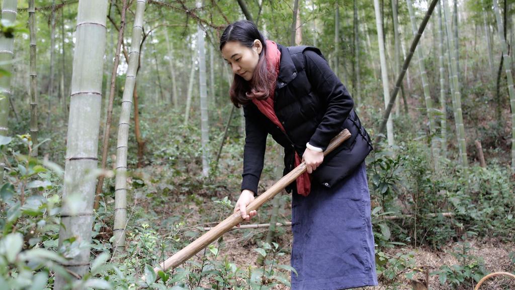 这个美女挖冬笋真厉害,一挖一个准!炒了个冬笋腊肉,太好吃了,不准流口水哦!