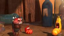 爆笑虫子爆笑菊花残,一个辣椒引发的群虫灾难