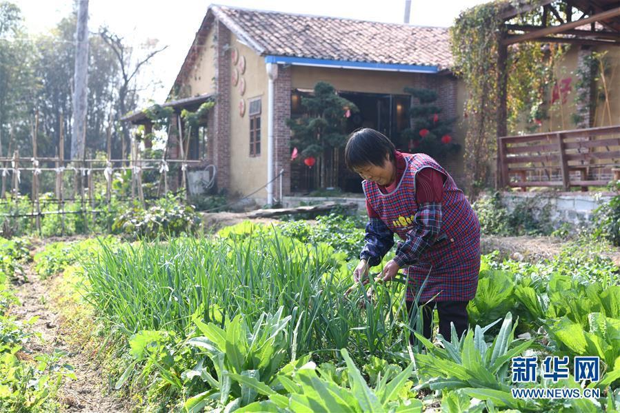 广西玉林: 修复旧民居 贫困村重焕生机