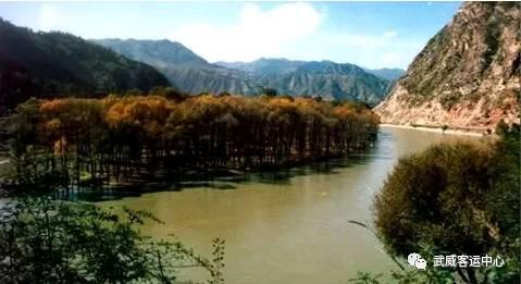 天祝三峡森林公园地处天祝藏族自治县西南部,属祁连山国家级自然保护