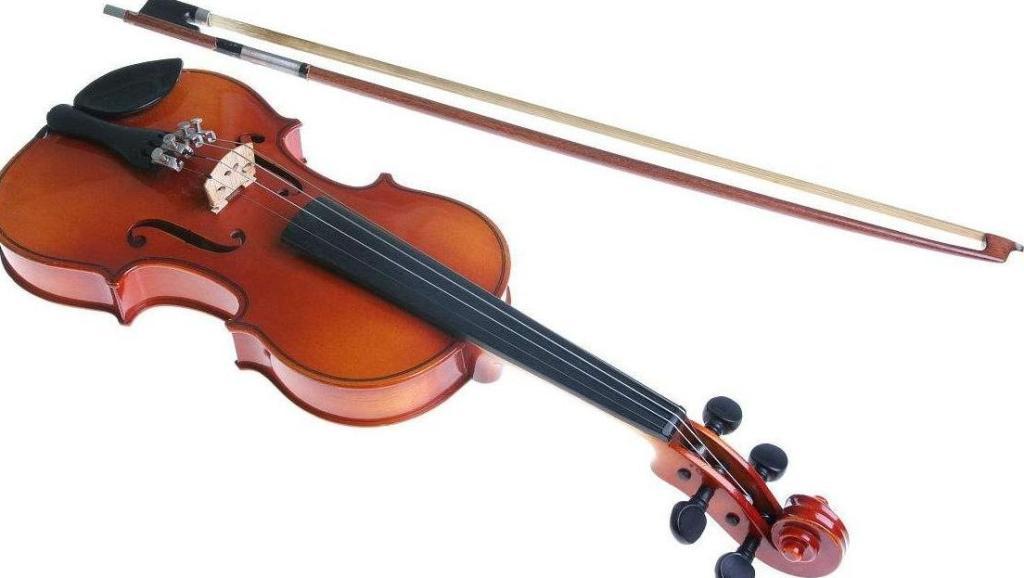 小提琴联奏 欢乐颂