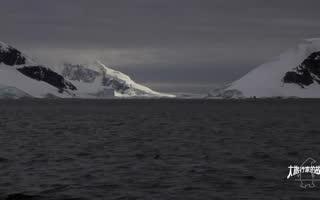 南极冷酷仙境,冰川与活火山的奇妙碰撞