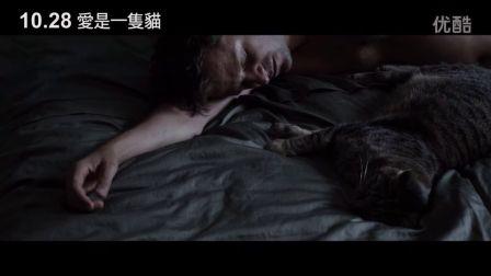 柏林影展泰迪熊獎【愛是一隻貓】HD中文電影預告
