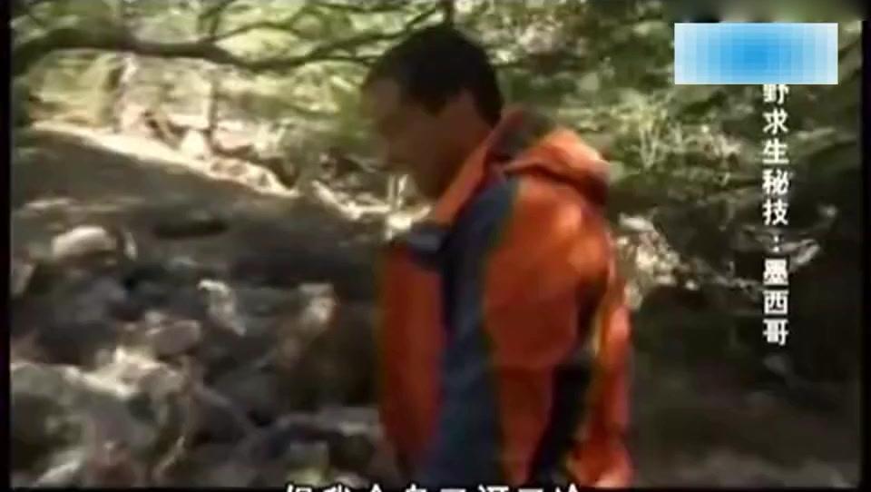 荒野求生: 贝爷这次演示的神技能,可以分分钟让人温暖如天堂