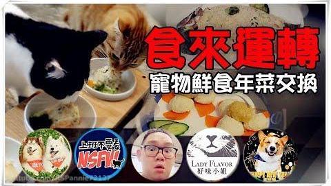 【鱼乾】食来运转 - 宠物鲜食年菜交换,充满爱的手做料理!