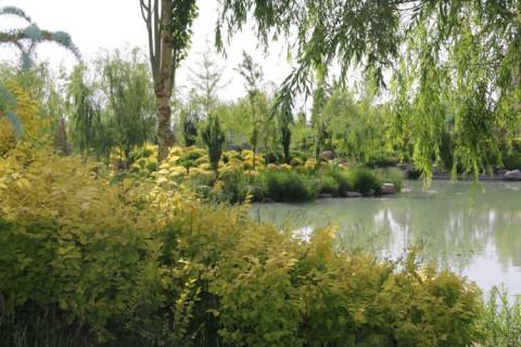 宁夏川我可爱的家乡 塞上江南, 美丽山川