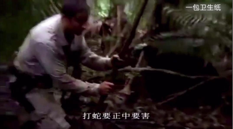 荒野求生倒霉的蟒蛇遇到饿昏了的贝爷,贝爷的表情开心坏了