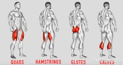 为了腿变成超级打桩机, 你必须要懂哪些动作?