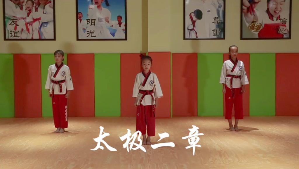3D跆拳道品式 太极七章图片