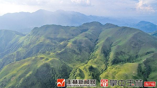 北流市扶新佰仁乡村生态旅游风景: 亲山玩水避暑好去处
