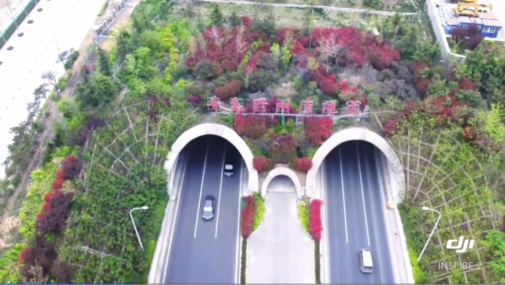 胶州湾海底隧道出口&青岛世界博览城