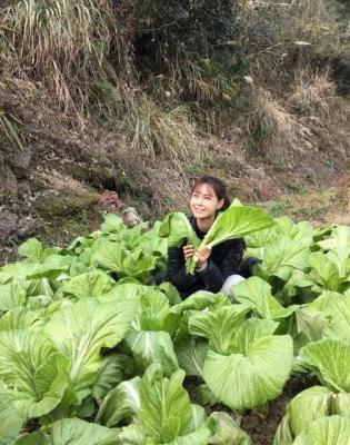 女微信头像绿色植物