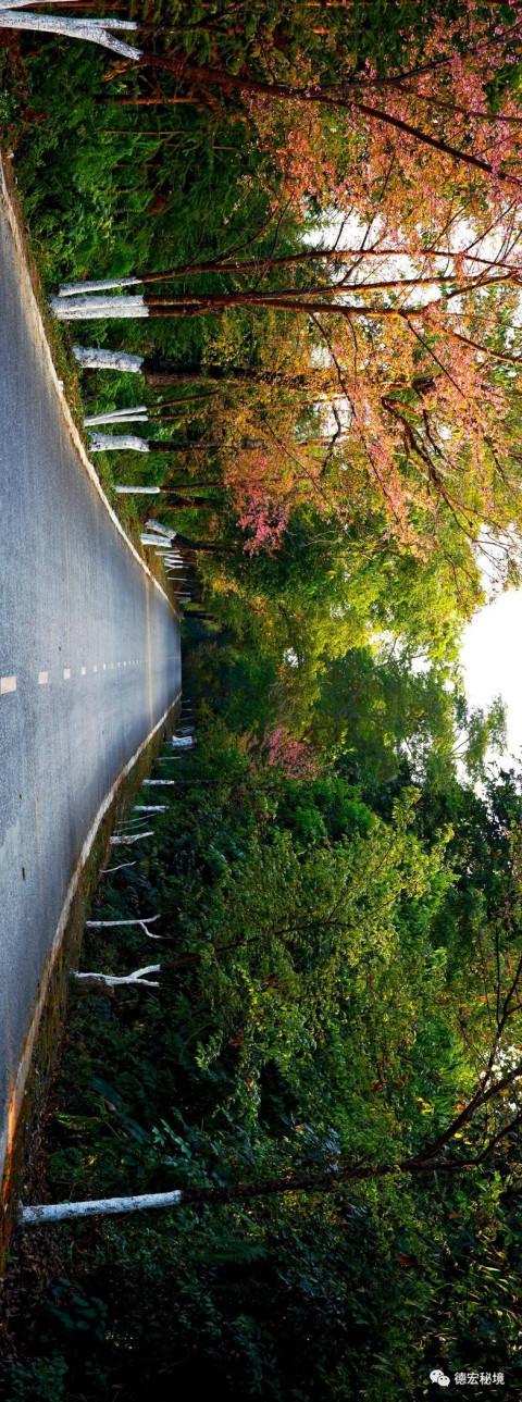 德宏公路的历史,文化,风景……更能深深地吸引你!