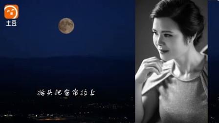 蔡琴 绿岛小夜曲live