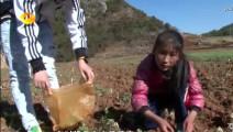 变形记: 农村9岁女孩花2个小时煮面给富二代吃,富二代感动哭!