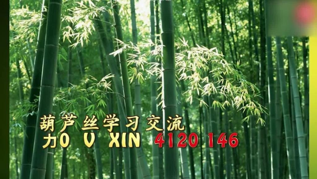 映山红葫芦丝简谱月光下的凤尾竹示范1_1高清