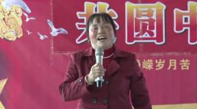 二胡演奏家段皑皑独奏:沂蒙山小调 江苏伟恒集团2013新春团拜会