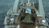 世界最大捕鱼船造价4个亿,捕一网鱼你几辈子都吃不完!