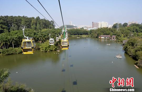 广州长隆开设空中缆车 全新视角观赏野生动物