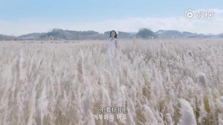 韩国广告《沙漠中的兰》 出其不意 让人脑洞大开