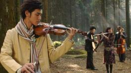 《一个人的星光》-苏永康,电视剧《绿光森林》插曲图片