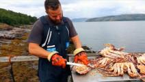 北极大餐: 宰杀帝王蟹,你怕了吗?