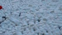 跳进倒满5000个棉花糖的游泳池会怎样?网友评论这样作死的双胞胎应该罚抄1万次《锄禾》