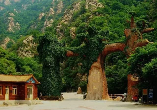 九龙山国家森林公园位于蓟州区穿芳峪乡,景区森林覆盖率达95%以上,被