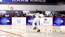 世界上最漂亮的舞步: 轮滑上的舞蹈