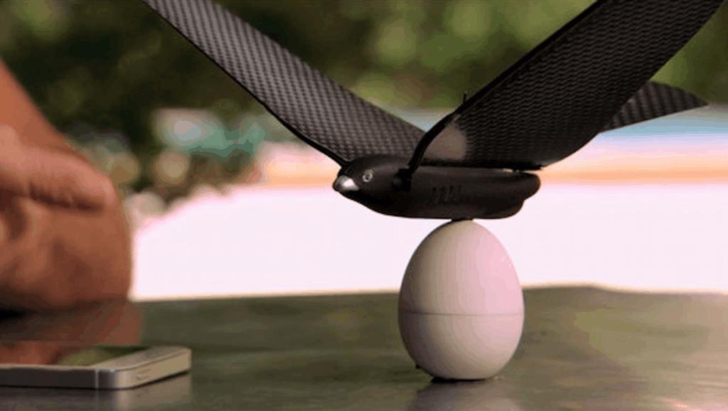 用双翅飞翔的仿生鸟 - Bionic Bird「创客前线」