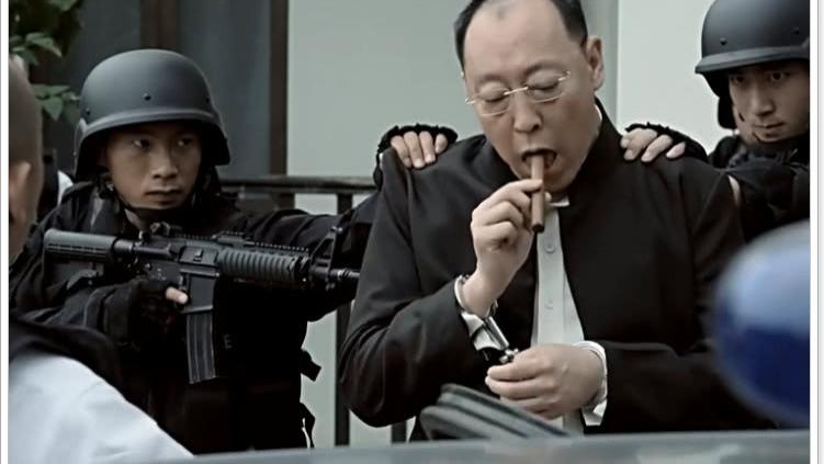 戰狼: 敏登被國際警察抓到時, 誰注意看身後的漢字, 暗示結局!
