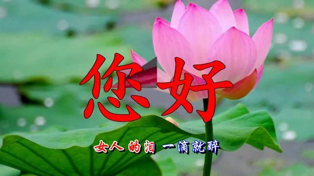 打开 《乔楚传》赵丽颖和林更新上演唯美古风爱情恋曲,美腻你的眼