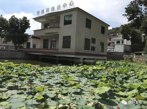 湖北罗田农村别墅