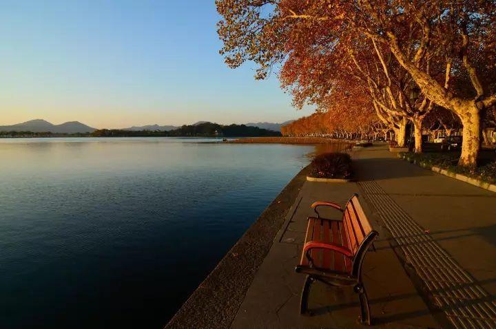 北山街是西湖景区内悬铃木最出名的一条路.