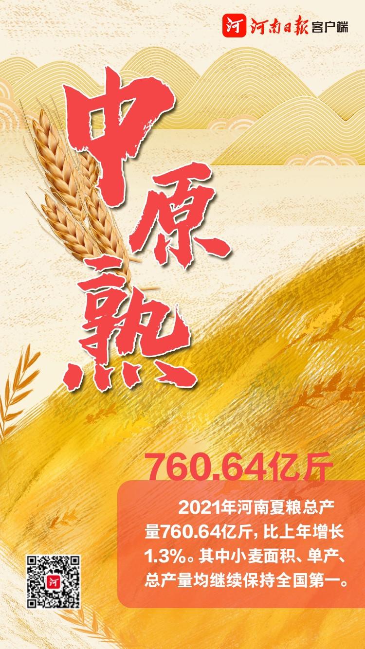 [三農]豐收!河南夏糧總產量760.64億斤-圖3