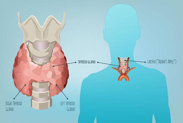 """甲狀腺為何會""""長瘤""""? 醫生: 或與這7個""""因素""""有關, 別忽視-圖1"""
