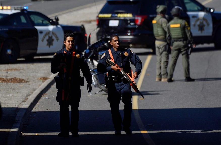 美國男子躲在草叢伏擊警察, 被大批警力包抄當場斃命-圖2