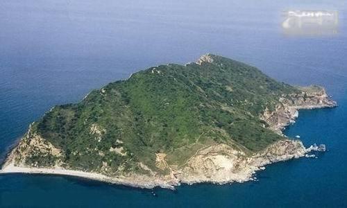 科普: 中国旅大的蛇岛上, 蝮蛇为什么特别多?