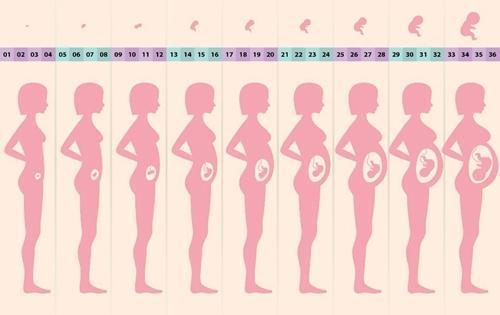 壹周热评: 16岁女生操场产子, 怀胎十月真的看不出来?