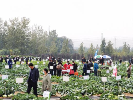 2020年第二屆鄭州種業博覽會暨第五屆中原國際種業科技展覽會開幕-圖6