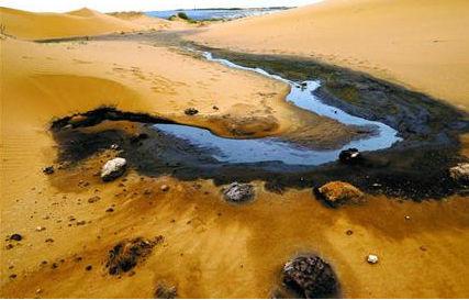 举报腾格里沙漠污染的李根山,被刑拘了
