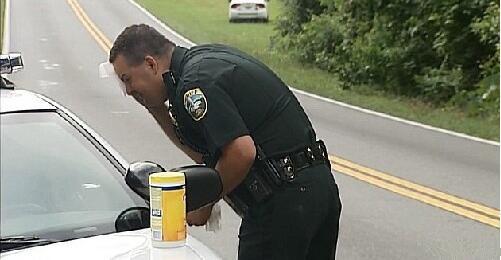 """羊驼堵路影响交通, 警察好心喂食被它来个""""出其不意"""""""