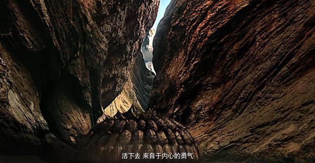 """張紀中電影《戰神蚩尤》荷爾蒙炸裂! 主演譚凱打瞭5天""""鱷魚""""-圖4"""