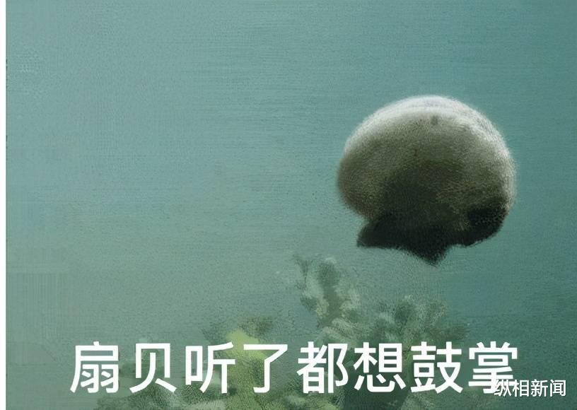 日本決定排污入海後: 防輻射藥紅瞭、基因檢測火瞭, 跑路扇貝都漲停瞭?-圖6