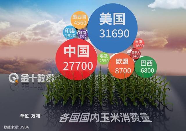 進口美國玉米增500%? 中國玉米畝產第7次破紀錄: 最高1663公斤-圖2