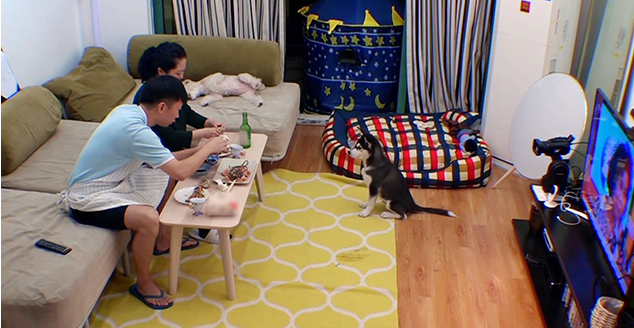 楊迪節目公開自己的傢, 一傢人過蝸居生活, 在傢用鞋子堆瞭一面墻-圖4