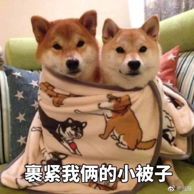 李承铉为戚薇庆生: 其他的话在被窝里说吧! 穿衣也丝毫不给单身狗留活路! 6