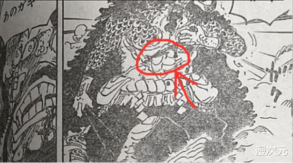 海賊王1010話: 索隆終於展現兩年後的全部實力, 凱多對他評價很高-圖4