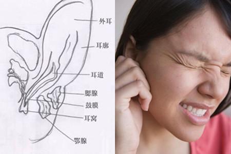 耳膜穿孔耳朵会流血吗 几个方法有效保护鼓膜